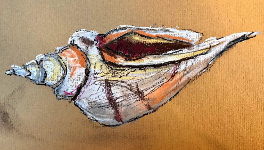 Donna Brewins-Cook Pastel Shell